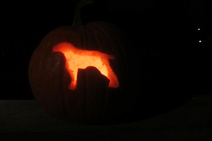Sis's pumpkin, a German Shorthaired Pointer (like our Molly).